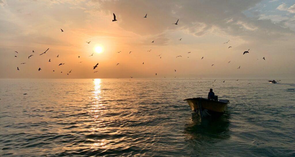 خلیج فارس از ساحل بوشهر - عکس از عباس ملک حسینی